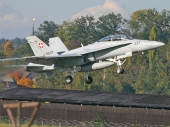 Swiss - Air Force Hornet FA-18D J-5237