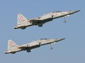Swiss - Air Force Tiger F-5E J-3011 J-3055