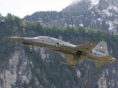 Swiss - Air Force Tiger F-5F J-3208