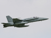 Finnish - Air Force McDonnell Douglas F-18C Hornet HN-431