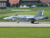 Finnish - Air Force McDonnell Douglas F-18C Hornet HN-418