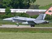Finnish - Air Force McDonnell Douglas F-18C Hornet HN-446