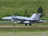Finnish - Air Force McDonnell Douglas FA-18C Hornet HN-403