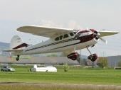 Cessna 195b NC30818