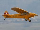 Piper PA-18-150 Super Cub HB-PLQ