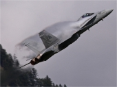 Hornet F/A-18C J-5017